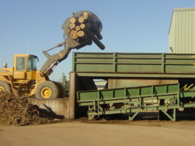 Mulch Clean Up Vibratory Conveyor for Sawmill